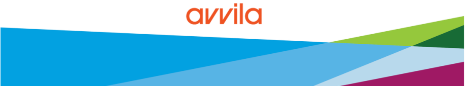 avvila business consultants